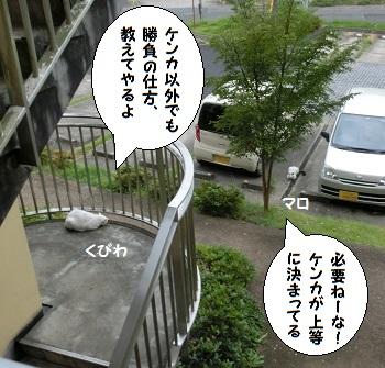 Cimg7432mo